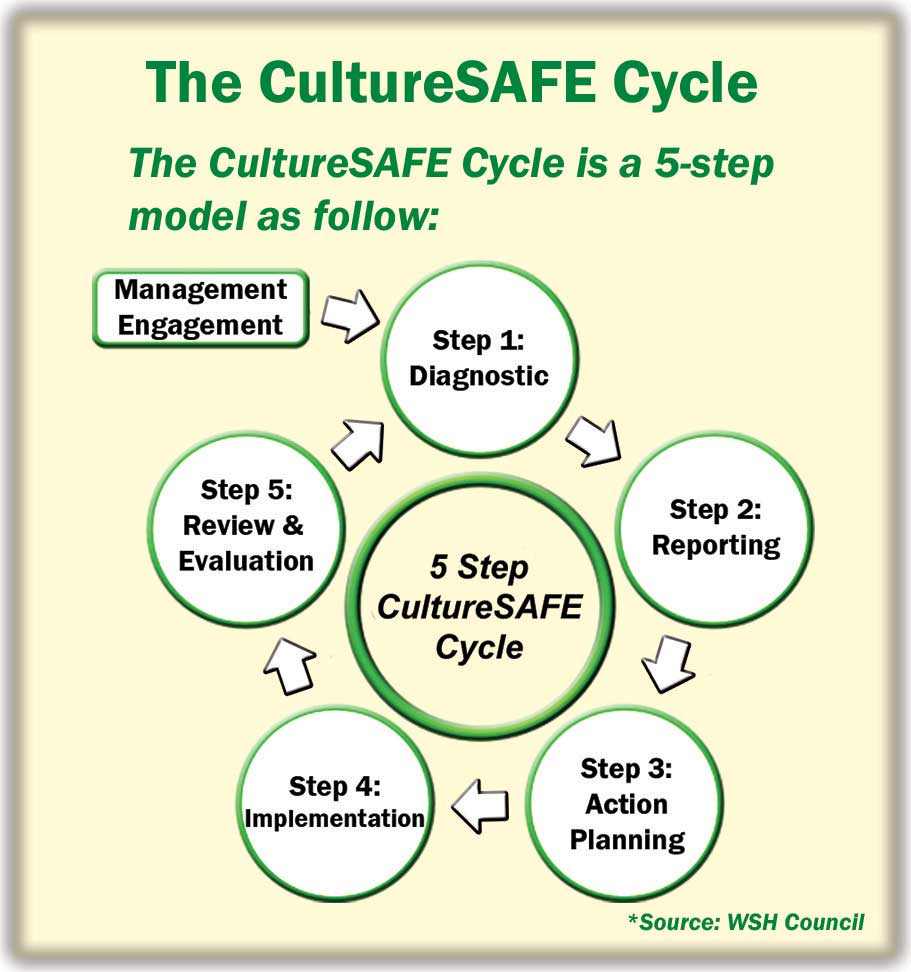 CultureSAFE-Cycle